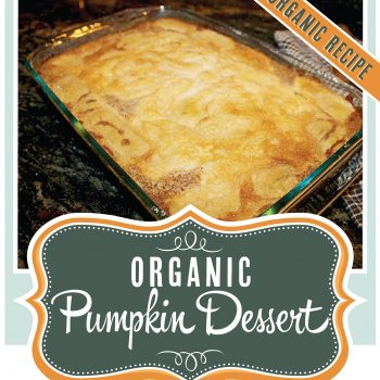 Organic Pumpkin Dessert - OrganicallyMade.com