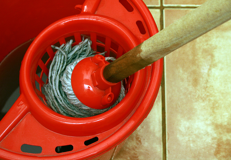http://www.dreamstime.com/royalty-free-stock-photos-cleaning-mop-bucket-image4529398