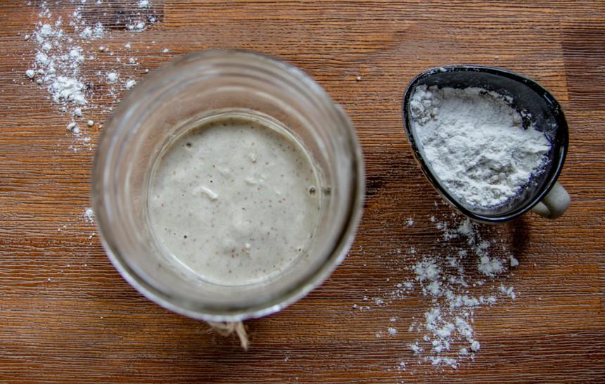 gluten free yeast starter